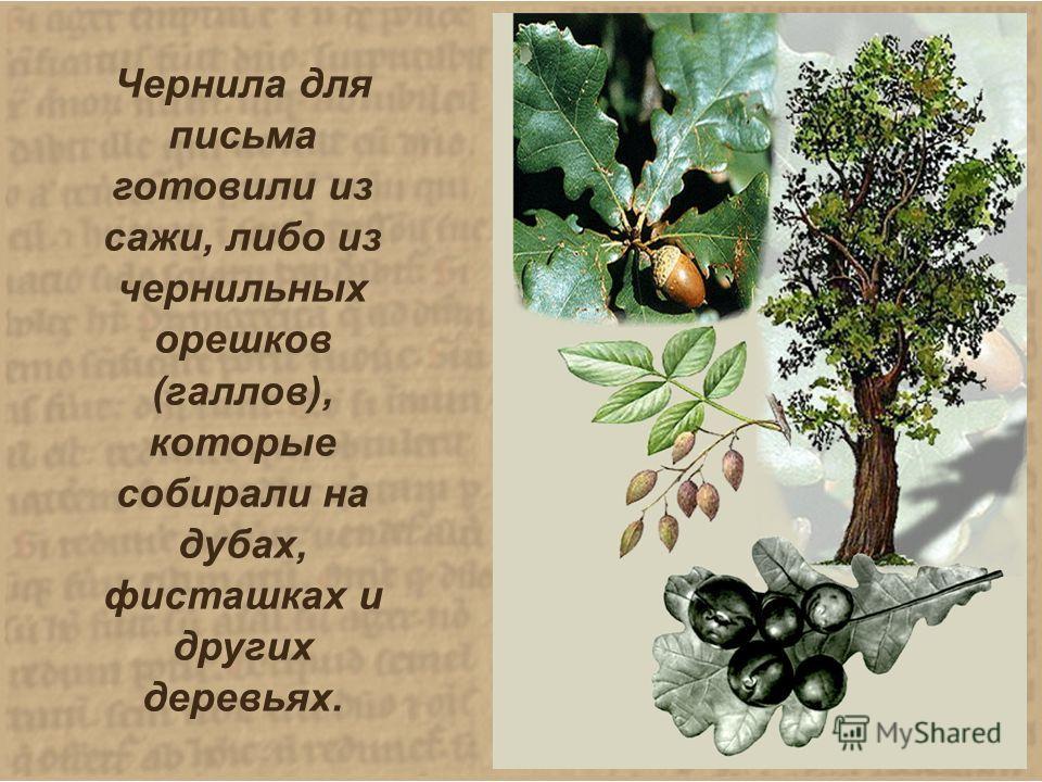 Чернила для письма готовили из сажи, либо из чернильных орешков (галлов), которые собирали на дубах, фисташках и других деревьях.