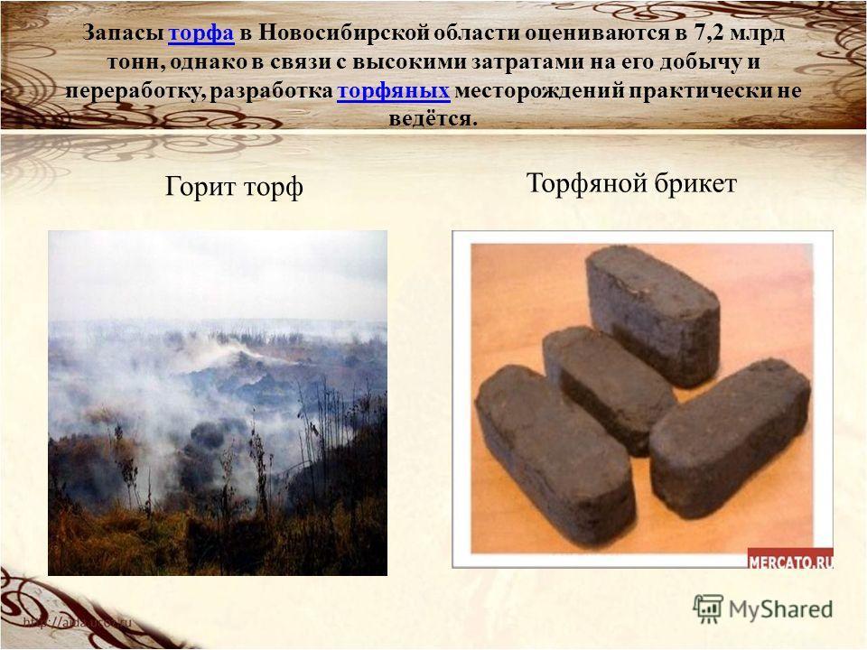Запасы торфа в Новосибирской области оцениваются в 7,2 млрд тонн, однако в связи с высокими затратами на его добычу и переработку, разработка торфяных месторождений практически не ведётся.торфаторфяных Горит торф Торфяной брикет