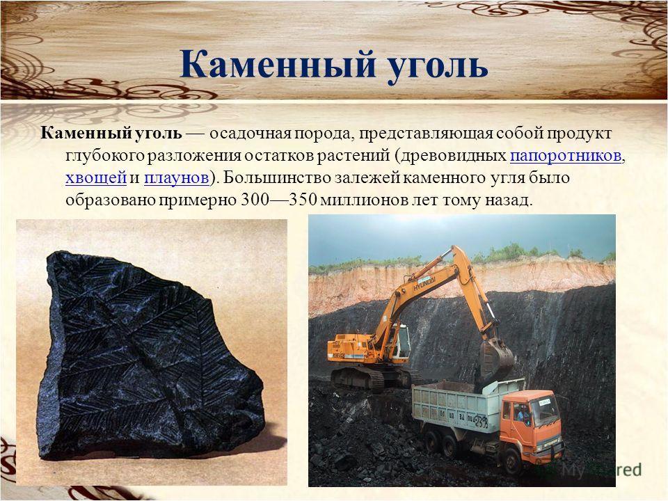 Каменный уголь Каменный уголь осадочная порода, представляющая собой продукт глубокого разложения остатков растений (древовидных папоротников, хвощей и плаунов). Большинство залежей каменного угля было образовано примерно 300350 миллионов лет тому на