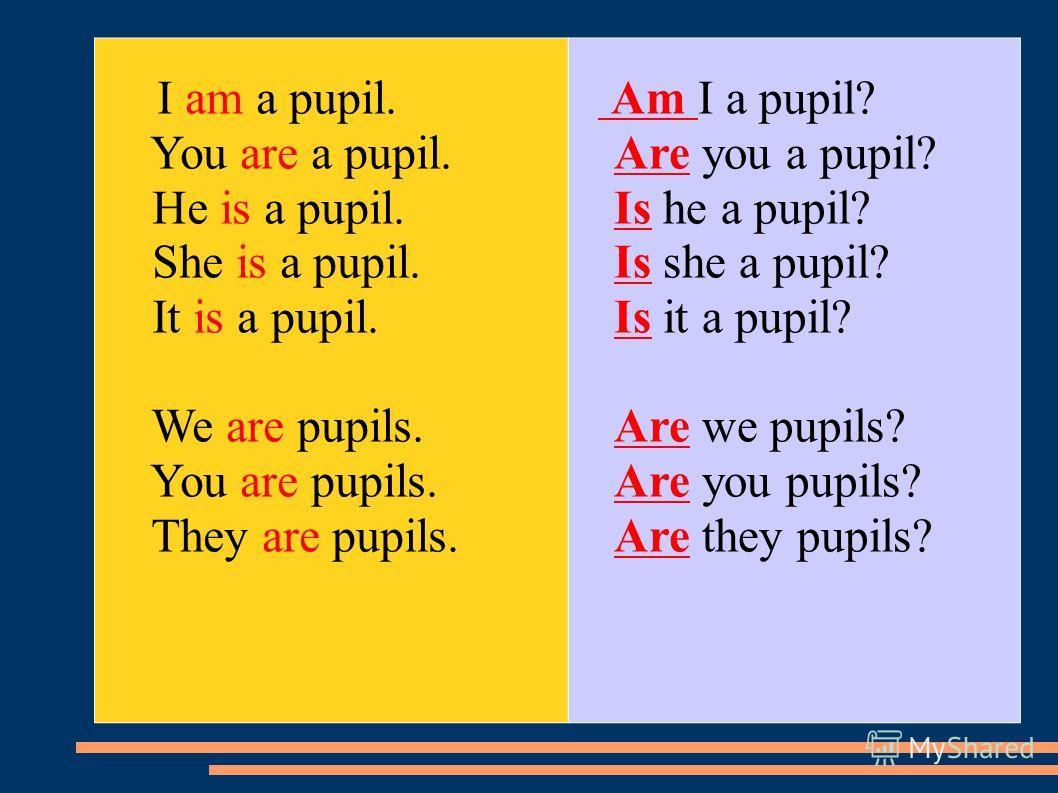 I am a pupil. You are a pupil. He is a pupil. She is a pupil. It is a pupil. We are pupils. You are pupils. They are pupils. Am I a pupil? Are you a pupil? Is he a pupil? Is she a pupil? Is it a pupil? Are we pupils? Are you pupils? Are they pupils?