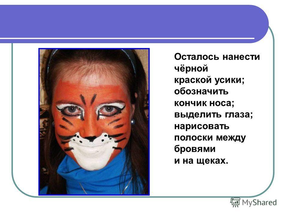 Осталось нанести чёрной краской усики; обозначить кончик носа; выделить глаза; нарисовать полоски между бровями и на щеках.
