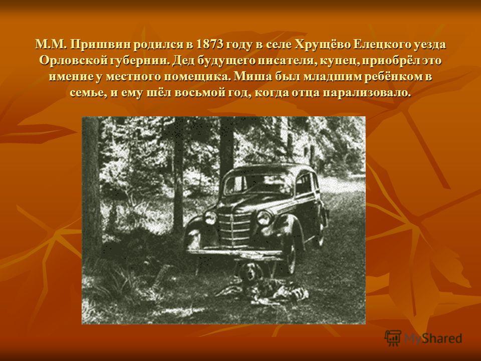 М.М. Пришвин родился в 1873 году в селе Хрущёво Елецкого уезда Орловской губернии. Дед будущего писателя, купец, приобрёл это имение у местного помещика. Миша был младшим ребёнком в семье, и ему шёл восьмой год, когда отца парализовало.