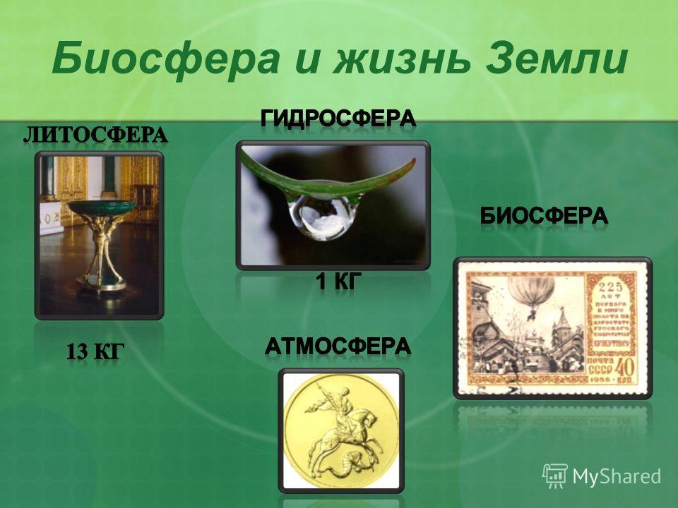 Биосфера и жизнь Земли