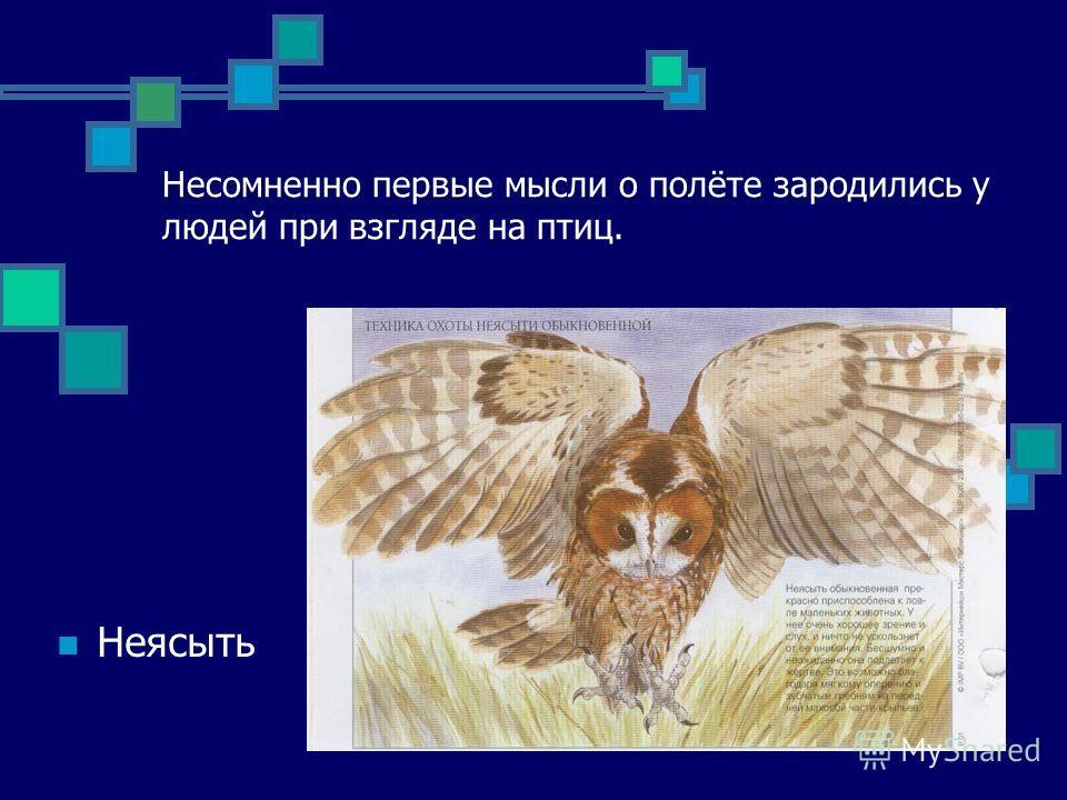 Несомненно первые мысли о полёте зародились у людей при взгляде на птиц. Неясыть
