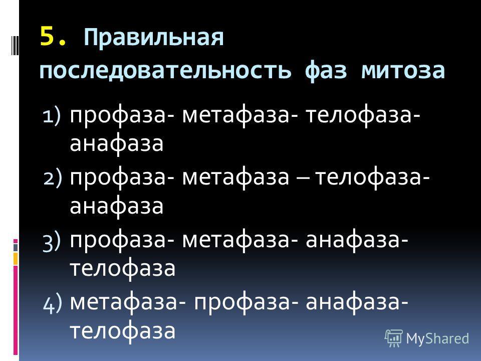 5. Правильная последовательность фаз митоза 1) профаза- метафаза- телофаза- анафаза 2) профаза- метафаза – телофаза- анафаза 3) профаза- метафаза- анафаза- телофаза 4) метафаза- профаза- анафаза- телофаза