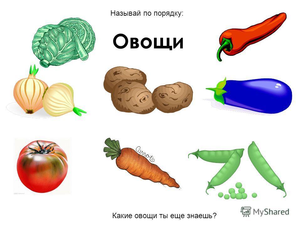 Овощи Какие овощи ты еще знаешь? Называй по порядку: