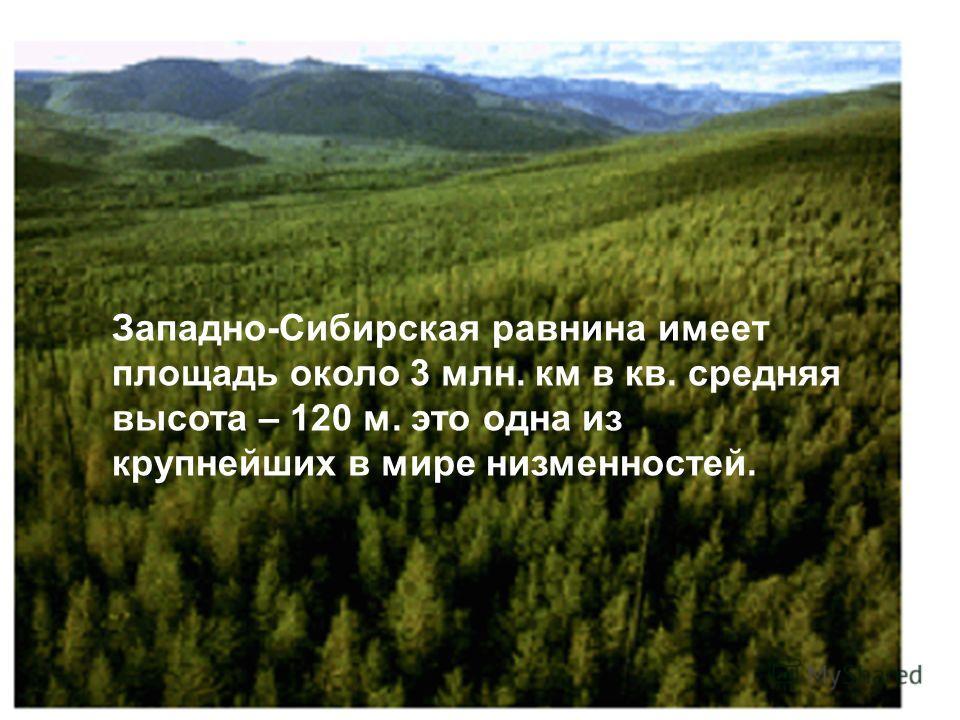 Западно-Сибирская равнина имеет площадь около 3 млн. км в кв. средняя высота – 120 м. это одна из крупнейших в мире низменностей.