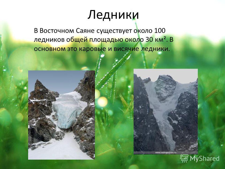 Ледники В Восточном Саяне существует около 100 ледников общей площадью около 30 км². В основном это каровые и висячие ледники.