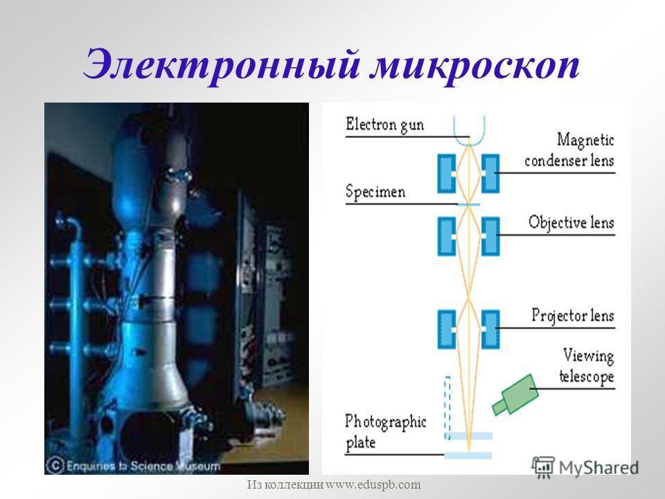 Электронный микроскоп Из коллекции www.eduspb.com