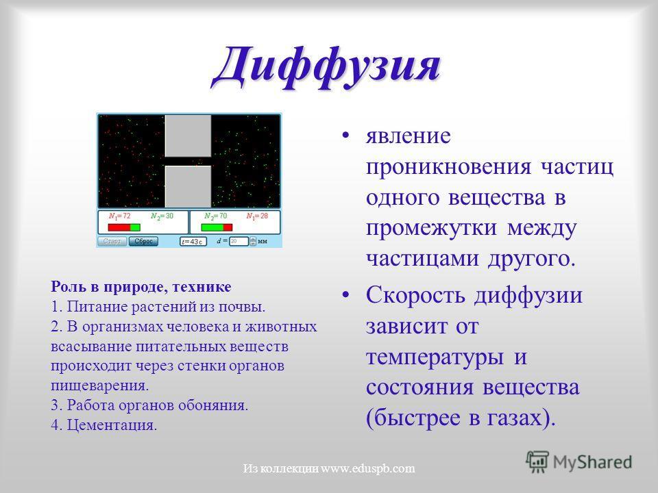 Диффузия явление проникновения частиц одного вещества в промежутки между частицами другого. Скорость диффузии зависит от температуры и состояния вещества (быстрее в газах). Роль в природе, технике 1. Питание растений из почвы. 2. В организмах человек