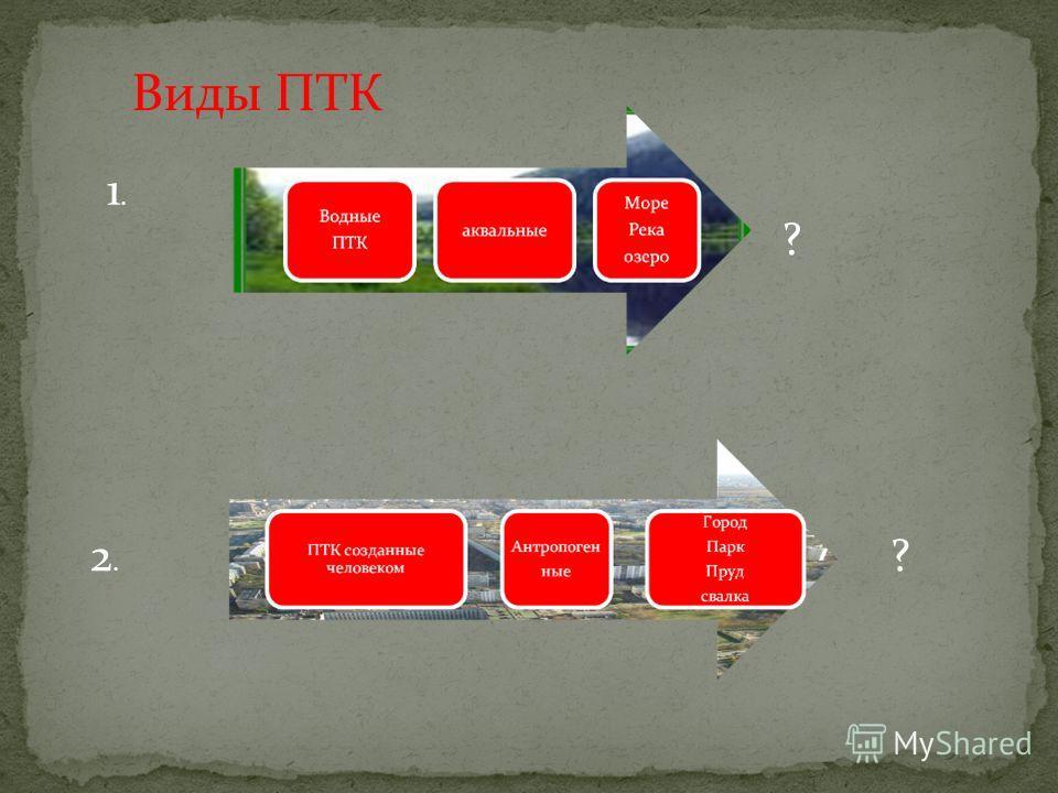 Виды ПТК 1.1. 2.2. ? ?