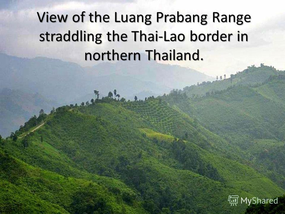 View of the Luang Prabang Range straddling the Thai-Lao border in northern Thailand.