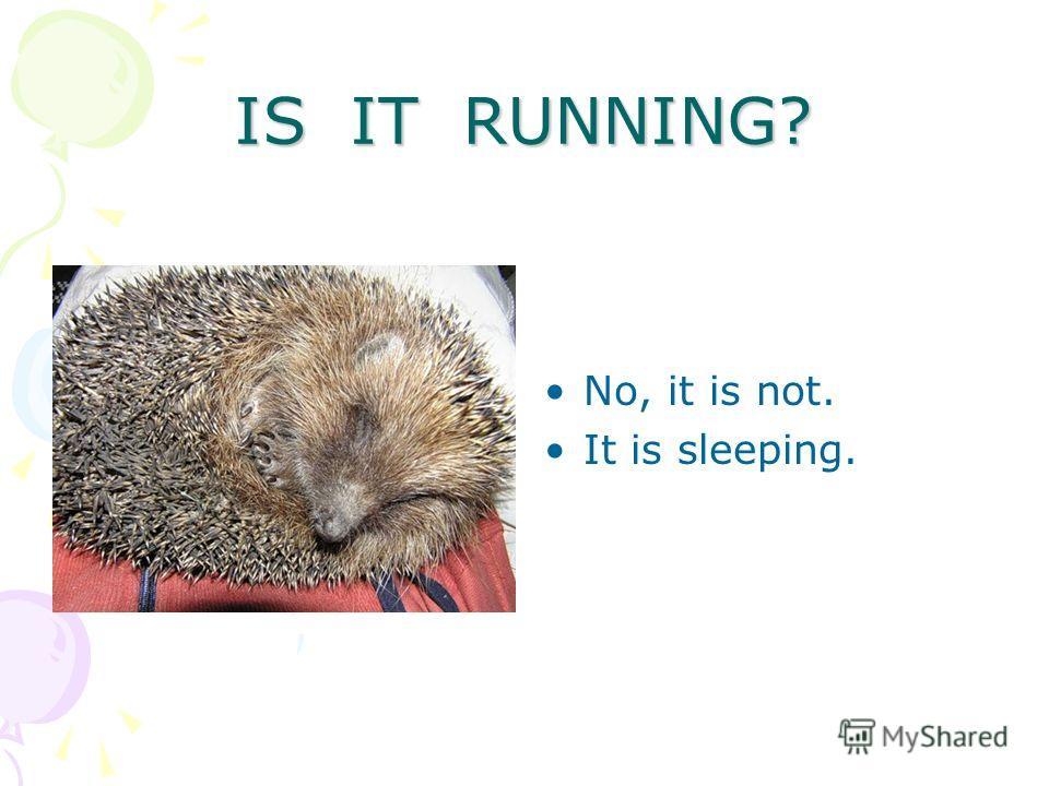 IS IT RUNNING? No, it is not. It is sleeping.