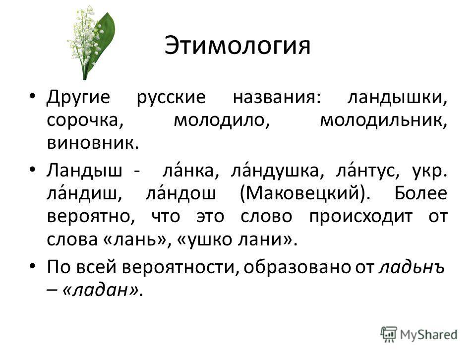 Этимология Другие русские названия: ландышки, сорочка, молодило, молодильник, виновник. Ландыш - ла́нка, ла́ндушка, ла́нтус, укр. ла́ндиш, ла́ндош (Маковецкий). Более вероятно, что это слово происходит от слова «лань», «ушко лани». По всей вероятност