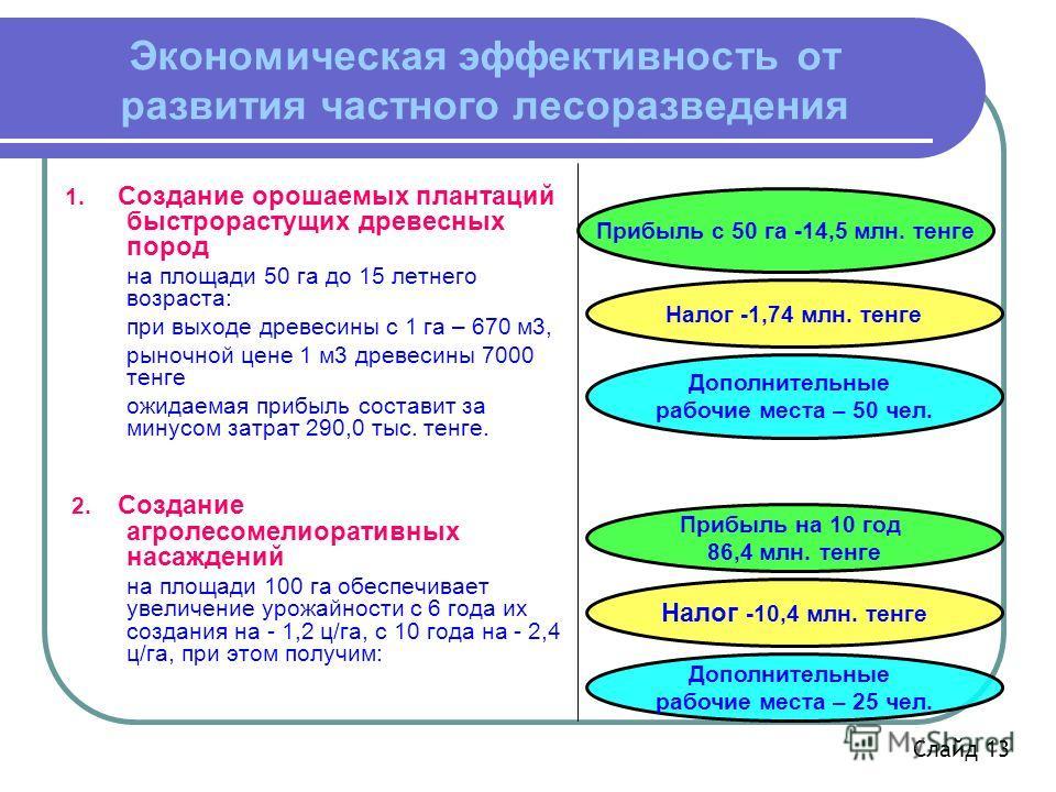 Налог -1,74 млн. тенге Прибыль с 50 га -14,5 млн. тенге Экономическая эффективность от развития частного лесоразведения 1. Создание орошаемых плантаций быстрорастущих древесных пород на площади 50 га до 15 летнего возраста: при выходе древесины с 1 г