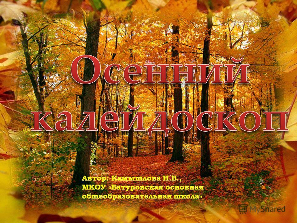 Автор: Камышлова Н.В., МКОУ «Батуровская основная общеобразовательная школа»