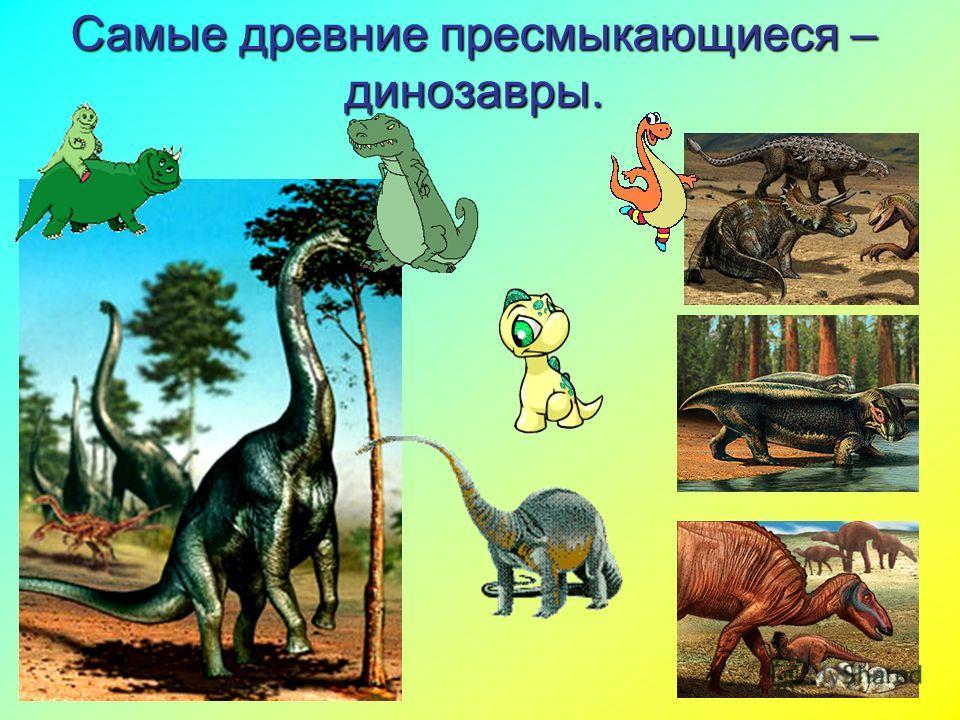 19.11.20132 Самые древние пресмыкающиеся – динозавры.