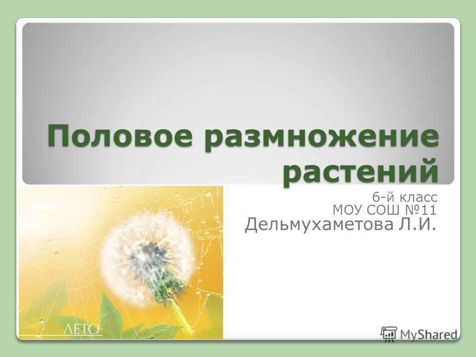 Половое размножение растений 6-й класс МОУ СОШ 11 Дельмухаметова Л.И.