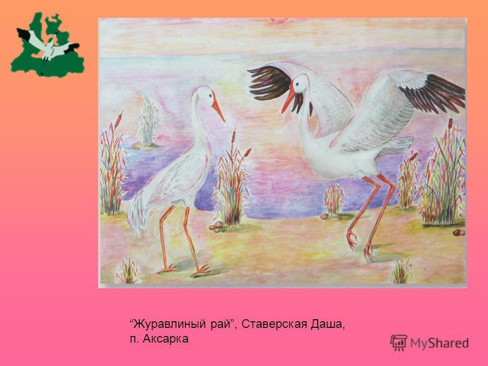 Журавлиный рай, Ставерская Даша, п. Аксарка