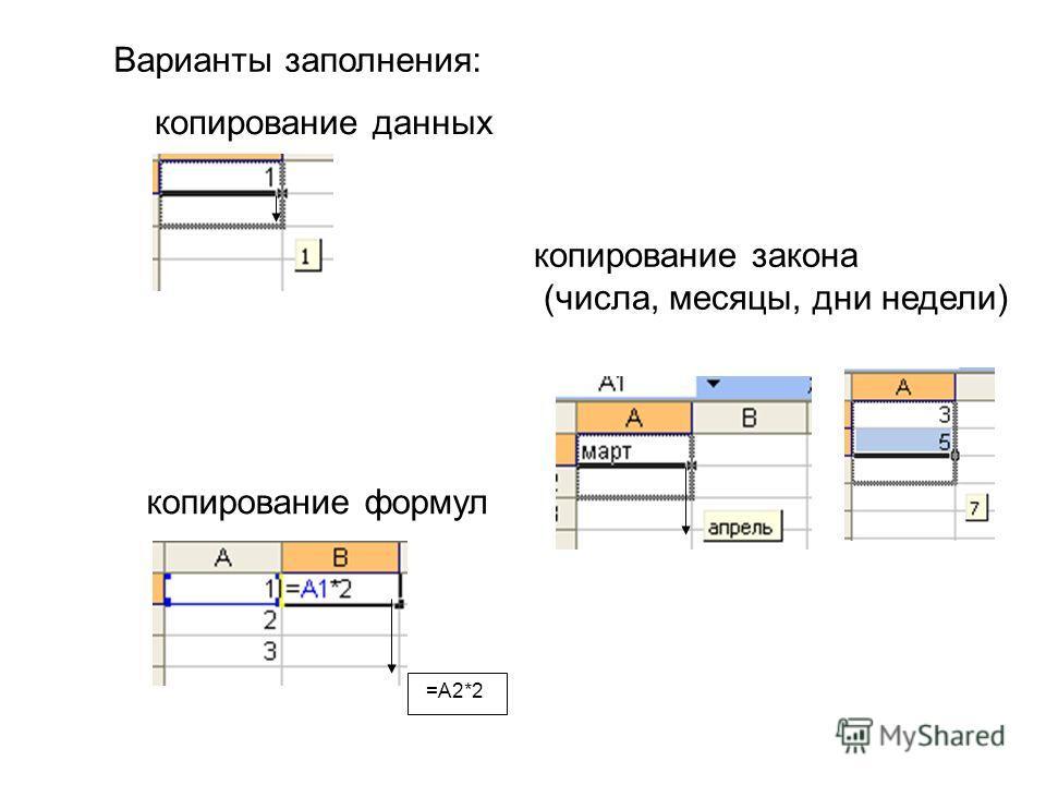Варианты заполнения: копирование данных копирование закона (числа, месяцы, дни недели) копирование формул =А2*2
