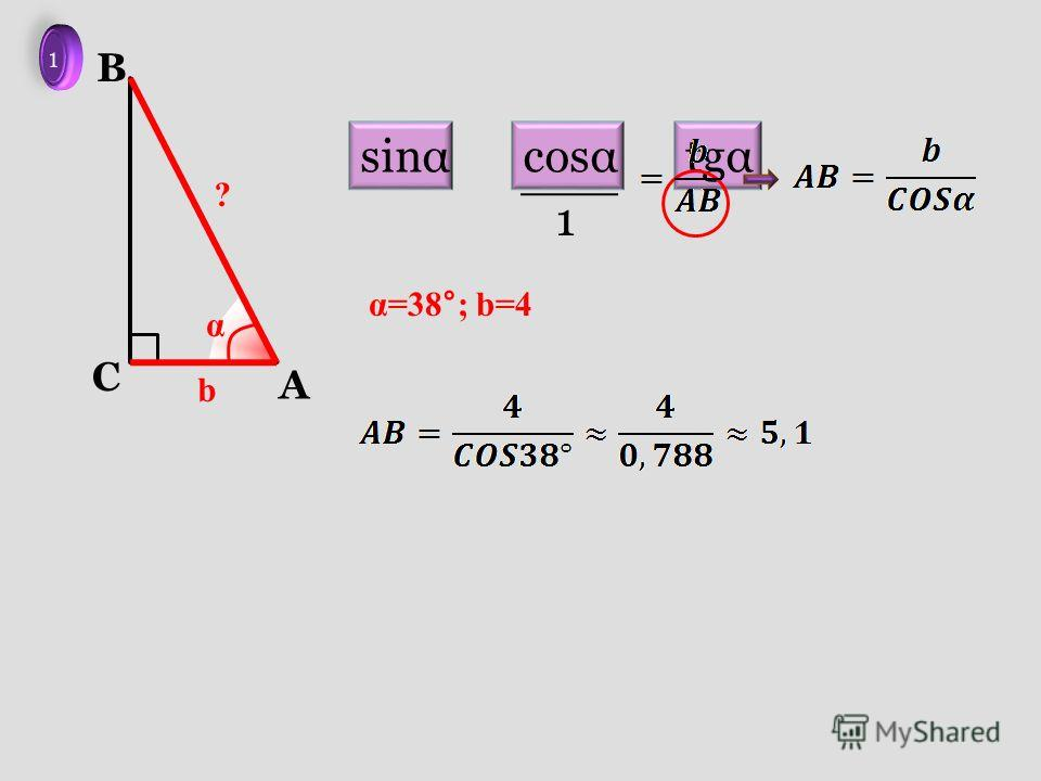 A C B b α ? α=38°; b=4 sinαcosαtgα 1