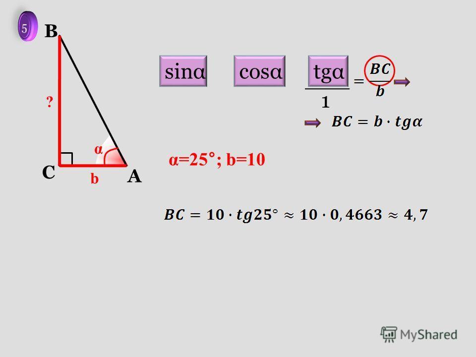 A C B b α ? α=25°; b=10 sinαcosαtgα 1
