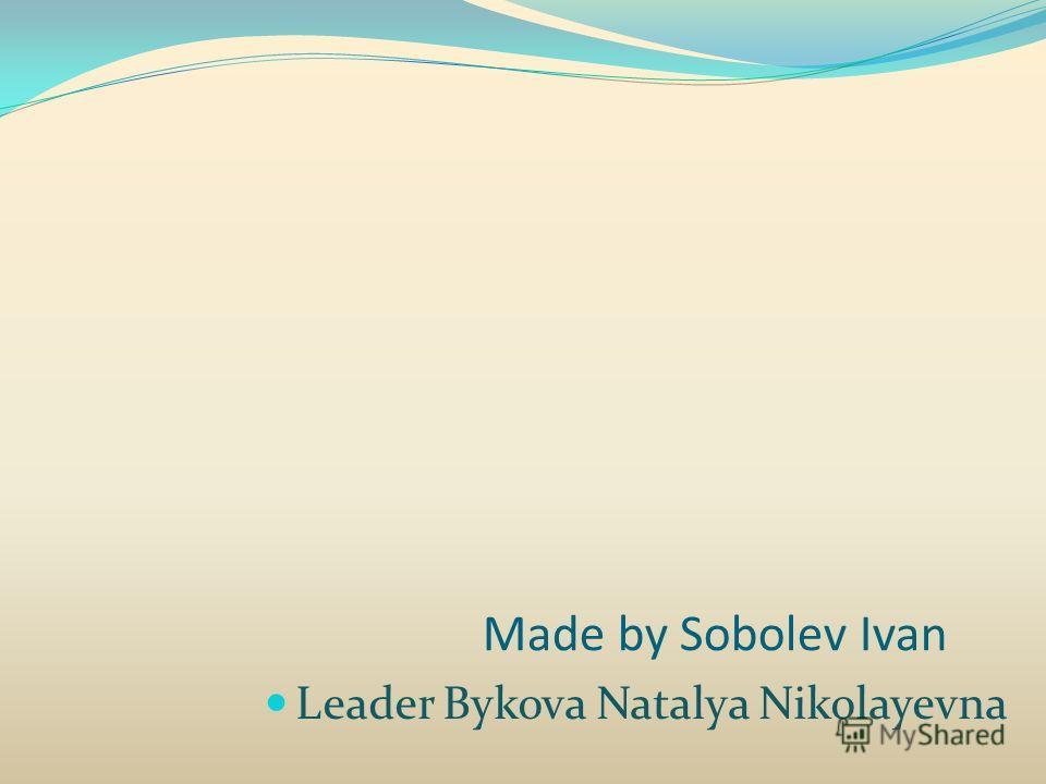 Made by Sobolev Ivan Leader Bykova Natalya Nikolayevna
