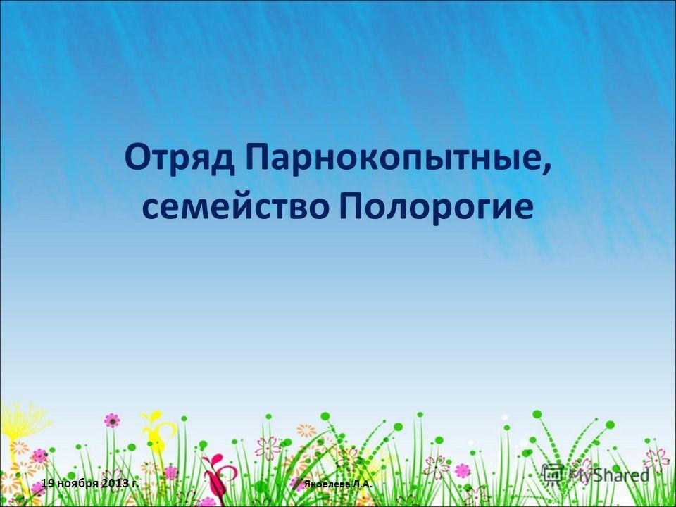 19 ноября 2013 г. Яковлева Л.А. Отряд Парнокопытные, семейство Полорогие