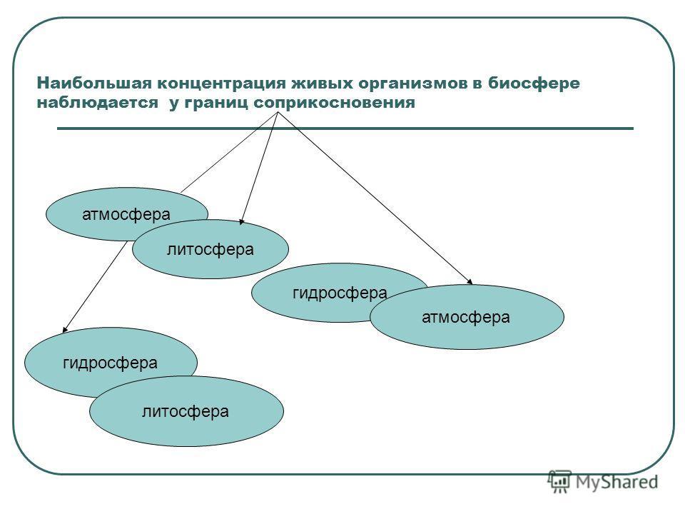 Наибольшая концентрация живых организмов в биосфере наблюдается у границ соприкосновения атмосфера литосфера гидросфера атмосфера гидросфера литосфера