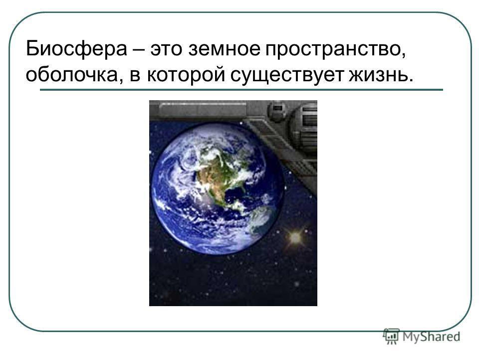 Биосфера – это земное пространство, оболочка, в которой существует жизнь.