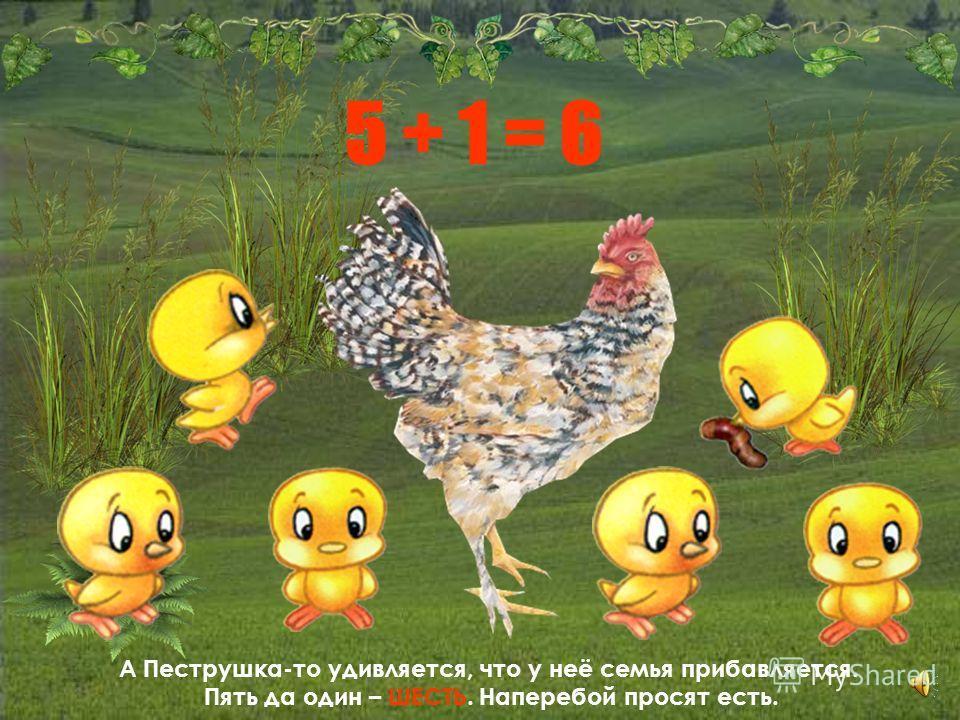Стала и Хохлатка с цыплятами ходить, стала их на улицу водить. Только зевает по сторонам: то тут постоит, то там, то назад побежит, то вперед, а цыплята за ней вразброд. Тут и случилась беда: пропал цыплёнок без следа. Один, два, три, четыре… А было