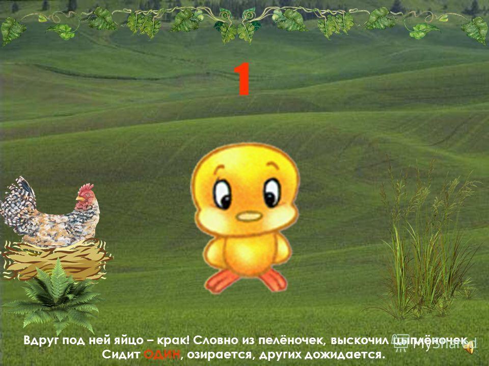 Сидит Пеструшка на яйцах, сидит удивляется: - Сколько времени сижу, ничего не получается. Как это так?