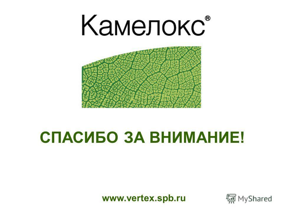www.vertex.spb.ru СПАСИБО ЗА ВНИМАНИЕ!