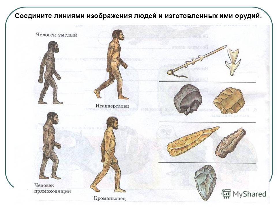 Соедините линиями изображения людей и изготовленных ими орудий.