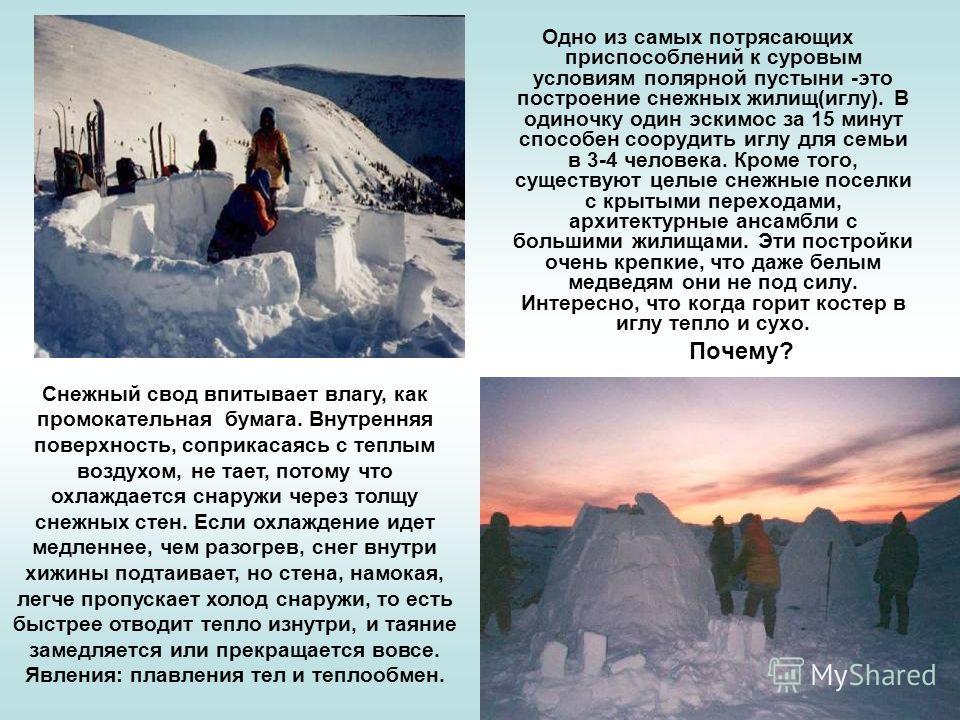 Одно из самых потрясающих приспособлений к суровым условиям полярной пустыни -это построение снежных жилищ(иглу). В одиночку один эскимос за 15 минут способен соорудить иглу для семьи в 3-4 человека. Кроме того, существуют целые снежные поселки с кры
