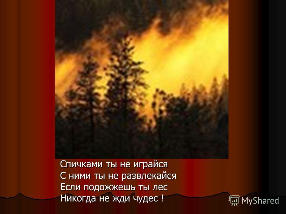 Спичками ты не играйся С ними ты не развлекайся Если подожжешь ты лес Никогда не жди чудес !
