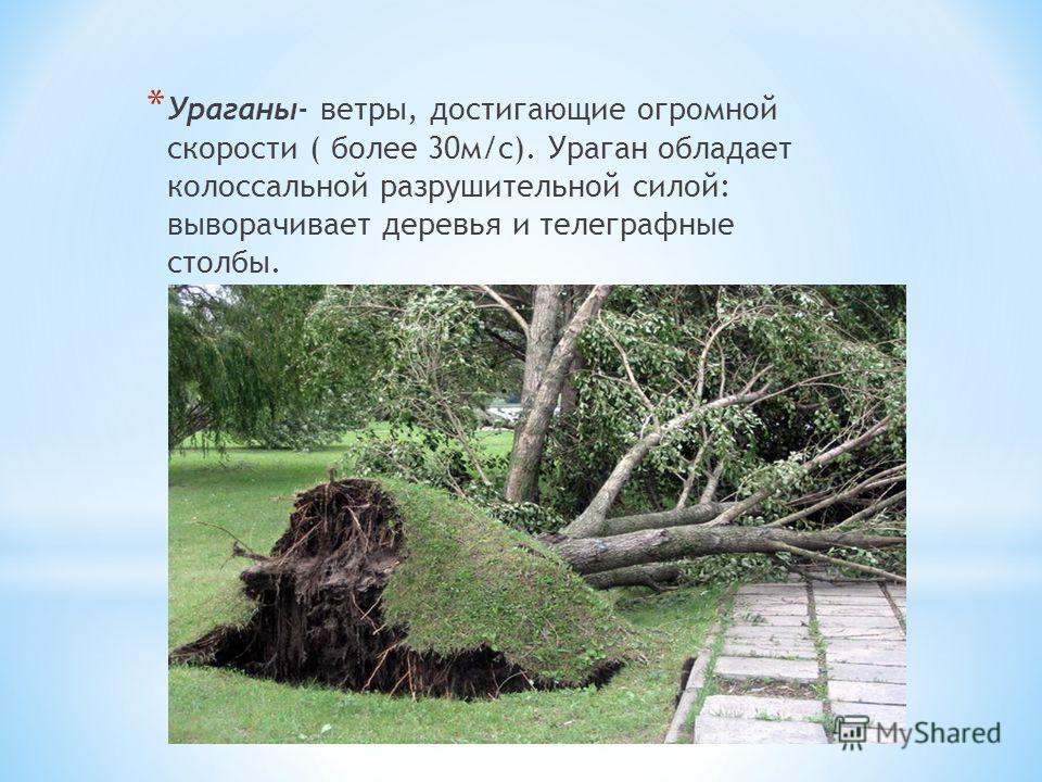 * Ураганы- ветры, достигающие огромной скорости ( более 30м/с). Ураган обладает колоссальной разрушительной силой: выворачивает деревья и телеграфные столбы.