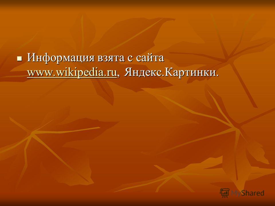 Информация взята с сайта www.wikipedia.ru, Яндекс.Картинки. Информация взята с сайта www.wikipedia.ru, Яндекс.Картинки. www.wikipedia.ru
