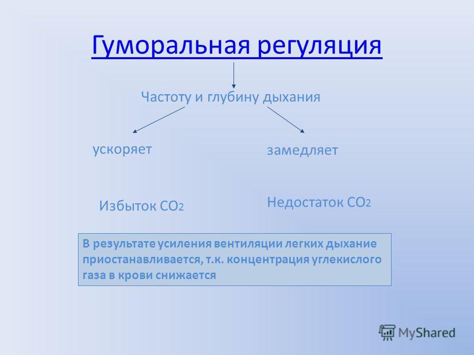 Гуморальная регуляция Частоту и глубину дыхания ускоряет замедляет Избыток СО 2 Недостаток СО 2 В результате усиления вентиляции легких дыхание приостанавливается, т.к. концентрация углекислого газа в крови снижается