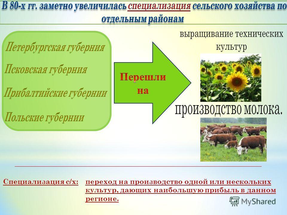Специализация с/х: переход на производство одной или нескольких культур, дающих наибольшую прибыль в данном регионе.