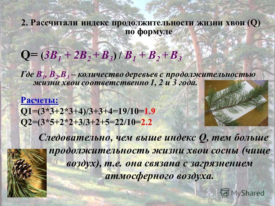 Q= ( 3В 1 + 2В 2 + В 3 ) / В 1 + В 2 + В 3 Где В 1, В 2,В 3 – количество деревьев с продолжительностью жизни хвои соответственно 1, 2 и 3 года. Расчеты: Q1=(3*3+2*3+4)/3+3+4=19/10=1.9 Q2=(3*5+2*2+3/3+2+5=22/10=2.2 2. Рассчитали индекс продолжительнос