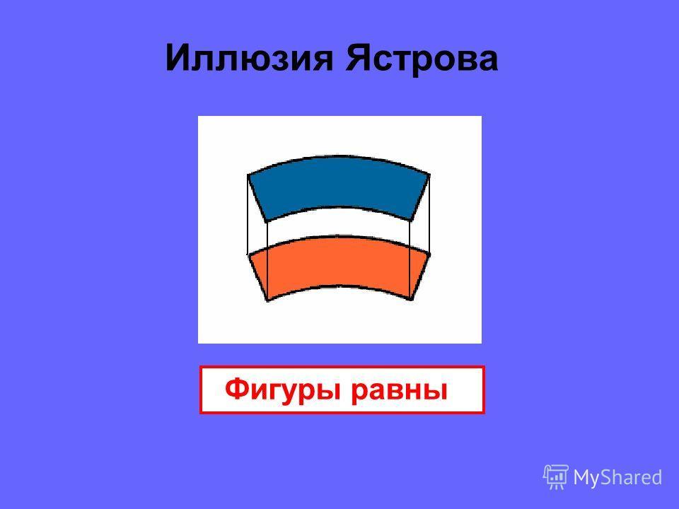 Иллюзия Ястрова