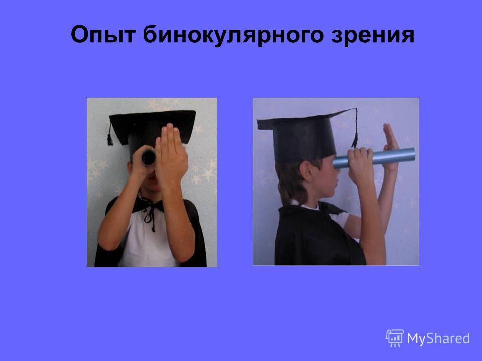 Передача сигналов по зрительному нерву Зрительный образ