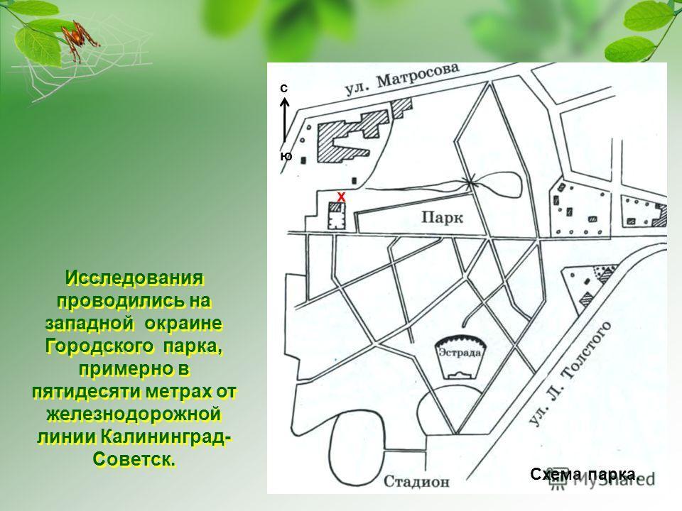 Советск. Схема парка. с ю