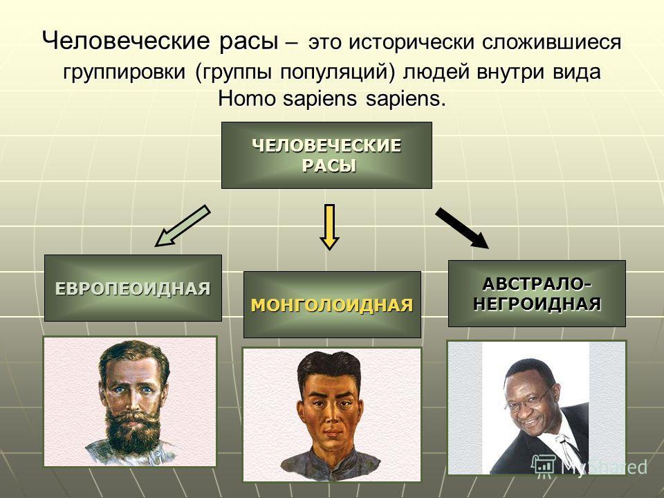Человеческие расы – это исторически сложившиеся группировки (группы популяций) людей внутри вида Homo sapiens sapiens. ЧЕЛОВЕЧЕСКИЕ РАСЫ РАСЫ ЕВРОПЕОИДНАЯ МОНГОЛОИДНАЯ АВСТРАЛО-НЕГРОИДНАЯ