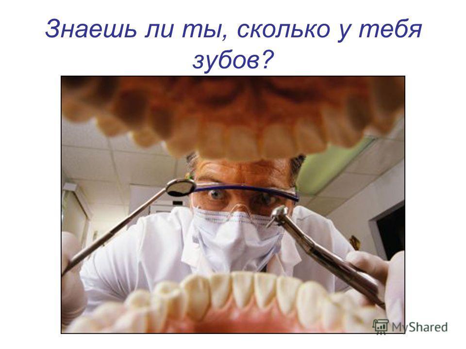 Знаешь ли ты, сколько у тебя зубов?