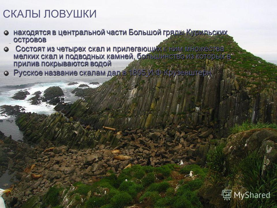 СКАЛЫ ЛОВУШКИ находятся в центральной части Большой гряды Курильских островов Состоят из четырех скал и прилегающих к ним множества мелких скал и подводных камней, большинство из которых в прилив покрываются водой Состоят из четырех скал и прилегающи