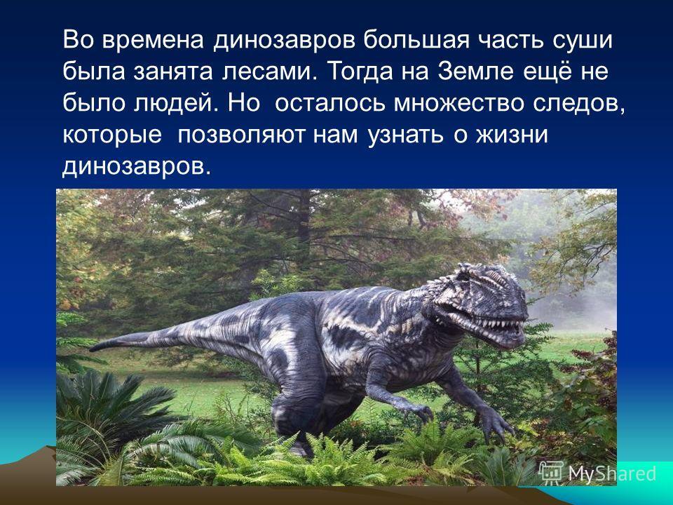 Во времена динозавров большая часть суши была занята лесами. Тогда на Земле ещё не было людей. Но осталось множество следов, которые позволяют нам узнать о жизни динозавров.