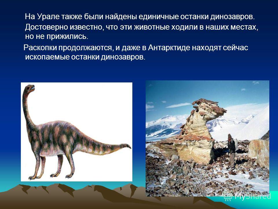 На Урале также были найдены единичные останки динозавров. Достоверно известно, что эти животные ходили в наших местах, но не прижились. Раскопки продолжаются, и даже в Антарктиде находят сейчас ископаемые останки динозавров.