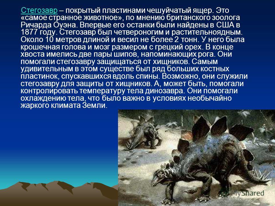 Стегозавр – покрытый пластинами чешуйчатый ящер. Это «самое странное животное», по мнению британского зоолога Ричарда Оуэна. Впервые его останки были найдены в США в 1877 году. Стегозавр был четвероногим и растительноядным. Около 10 метров длиной и в